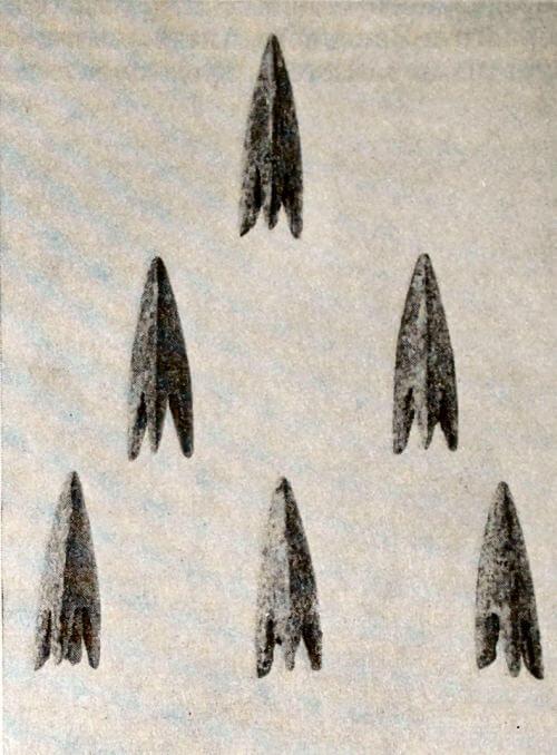 Бронзовые наконечники стрел из кургана в Туяхте (Алтай). V-IV вв. до н.э.